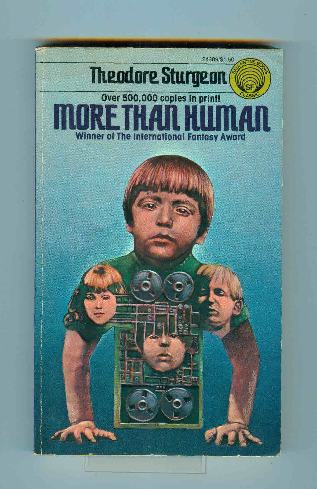 More Than Human (bookcover)